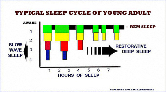 Sleep is the Most Critical